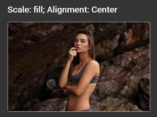 Scale & Align Images To Fit Their Parent Containers - Image Scale