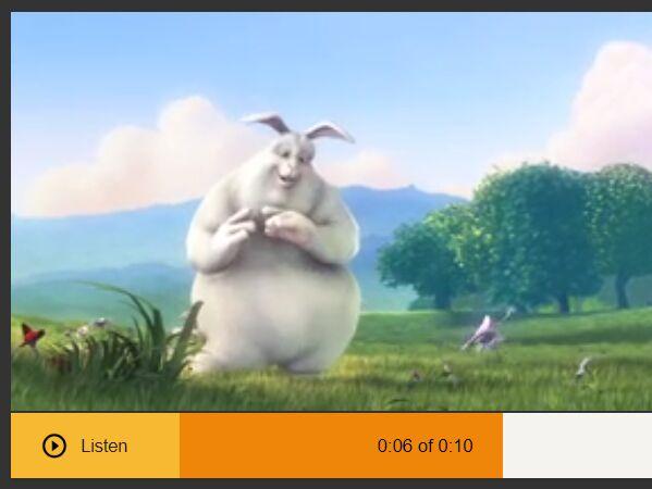 Create Custom Video/Audio Player Controls - mediaStyler