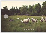 <b>Full-featured jQuery Content / Image Slider Plugin - jSlider</b>