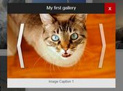 Adaptive Gallery lightbox Plugin For jQuery - easyJqueryGallery