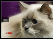Horizontal & Vertical Image Carousel Plugin For jQuery