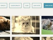 Create Custom Hover Effects On Images - jQuery picBeautifier-3000