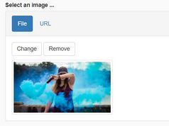 Image Upload Preview Plugin With jQuery And Bootstrap - img-upload