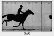 JZoopraxiscope - Image Animations Plugin
