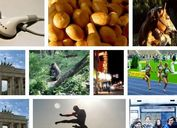 Lightweight & Flexible Gallery Plugin with jQuery - flexImages