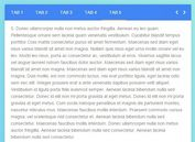 Material Design Inspired Tabs Modal with jQuery and CSS3