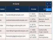 Minimal Paginatable Data Grid Plugin For jQuery - H Grid