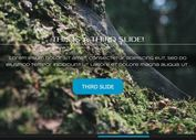 Responsive Dynamic Content Slider With jQuery