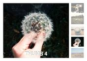 Simple Automatic Image Rotator Plugin with jQuery