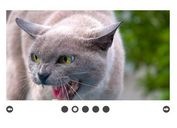 Simple Automatic Image Slideshow Plugin For jQuery