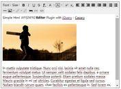 Simple Html WYSIWYG Editor Plugin with jQuery - Cazary