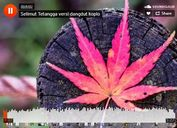 Simple Soundcloud Player Plugin With jQuery