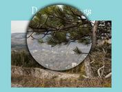 Simple Yet Versatile jQuery Image Magnifying Plugin - Zoomple