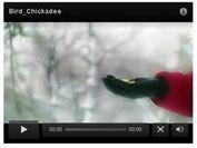 Smart jQuery Brightcove Video Plugin