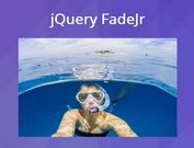 Fade/Zoom In Elements On Scroll - jQuery FadeJr