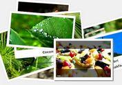 jQuery Draggable Polaroid Photo Gallery Plugin