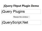 jQuery Plugin For Auto Scalable Input & Select Elements - Fitput