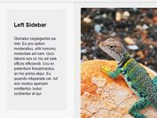 jQuery Plugin For Intelligent Sticky Sidebars - Theia Sticky Sidebar