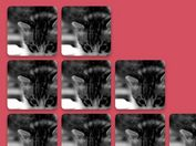 jQuery Plugin For Responsive Resizable Grid Layout - Resizeable.js