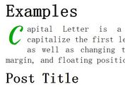 jQuery Plugin To Capitalize First Letter - Capital Letter