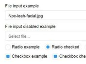 jQuery Plugin To Create Beautiful Custom Form Controls - Formikation