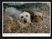 jQuery Plugin To Display Flickr Images On The Webpage - jflickrfeed