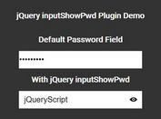 jQuery Plugin To Reveal Hidden Passwords - inputShowPwd