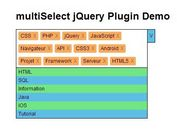 jQuery Plugin To Select Multiple Items From A Dropdown List - multiSelect