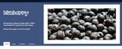 Blueberry Jquery Image Slider Plugin