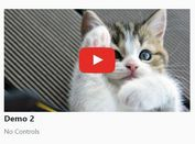 Performance-focused Youtube Video Embed - jQuery embedVideo